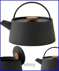 Japan Black Cast Iron Tea Kettle TETSUBIN NANBU IH OK Modern Design Courier Ship