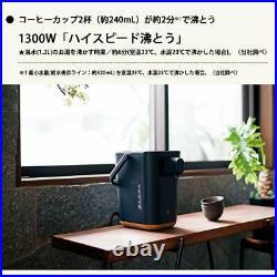 STAN. Microcomputer boiling electric pot black kettle ZOJIRUSHI Japan DHL Fast